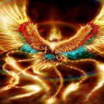 Karma e reincarnazione (video)