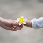 La condivisione del Bene Comune (gratuitamente)